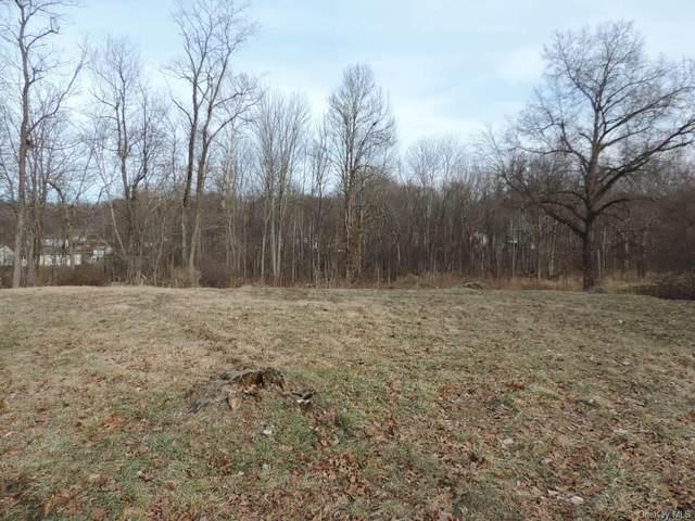 8 Maywood Road, Newburgh, NY 12550 (MLS #H6096526) :: Cronin & Company Real Estate
