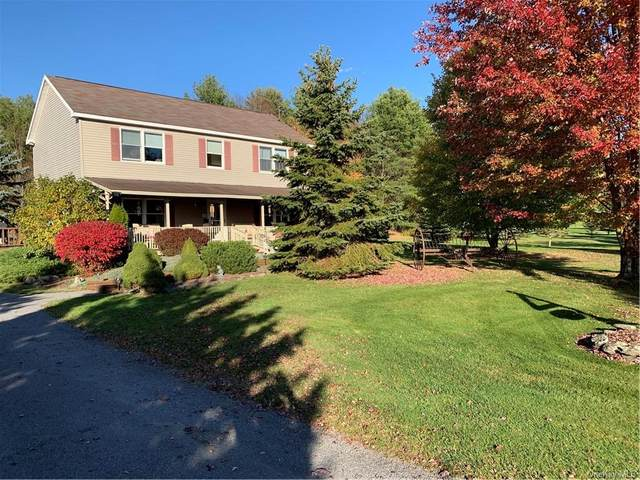 145 Highland Acres, Other, NY 13733 (MLS #H6096585) :: Signature Premier Properties
