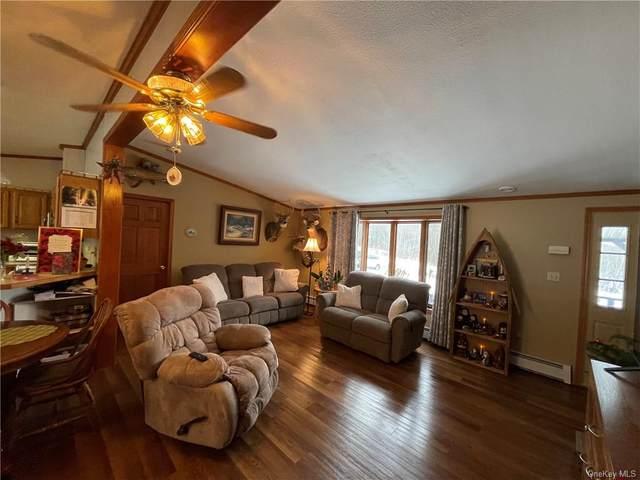 7 Armstrong Road, Neversink, NY 12765 (MLS #H6096730) :: William Raveis Baer & McIntosh