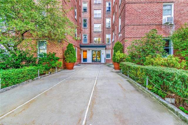 19 Abeel Street 5M, Yonkers, NY 10705 (MLS #H6096818) :: RE/MAX RoNIN