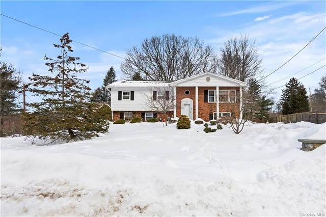 22 Rock Drive, Valley Cottage, NY 10989 (MLS #H6096949) :: Howard Hanna Rand Realty