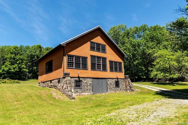 74 Leonard Road, Monticello, NY 12701 (MLS #H6096951) :: Barbara Carter Team