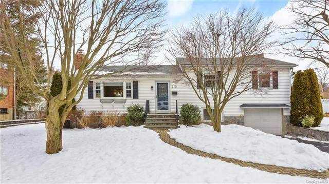 710 Forest Avenue, Larchmont, NY 10538 (MLS #H6097042) :: McAteer & Will Estates | Keller Williams Real Estate