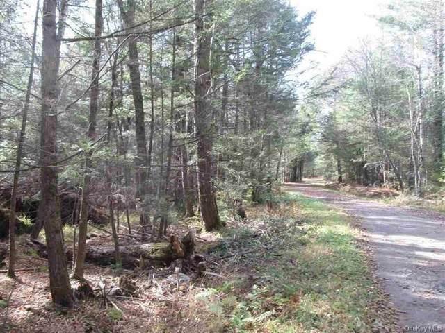 Diamond Road, Ellenville, NY 12428 (MLS #H6097068) :: Cronin & Company Real Estate