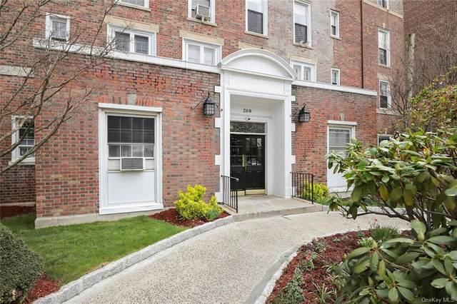 208 Centre Avenue 3F, New Rochelle, NY 10805 (MLS #H6097117) :: Laurie Savino Realtor