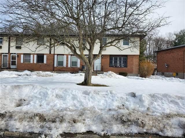 505 Parr Meadow Drive #505, Newburgh, NY 12550 (MLS #H6097138) :: William Raveis Baer & McIntosh