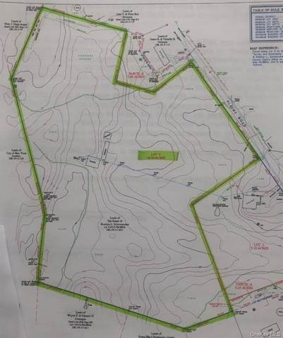 TBD Plains Road, Wallkill, NY 12589 (MLS #H6097147) :: William Raveis Baer & McIntosh