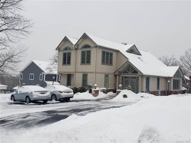 407 N Highland Avenue, Nyack, NY 10960 (MLS #H6097300) :: Howard Hanna Rand Realty