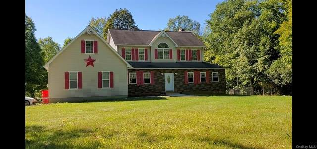 918 Orchard Drive, Wallkill, NY 12589 (MLS #H6097327) :: William Raveis Baer & McIntosh