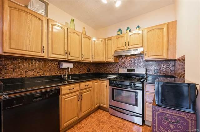 780 Brook Avenue 31B, Bronx, NY 10451 (MLS #H6097362) :: Mark Boyland Real Estate Team