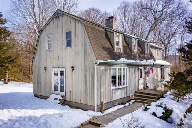 62 Cedar Lane, Pawling, NY 12564 (MLS #H6097464) :: William Raveis Baer & McIntosh