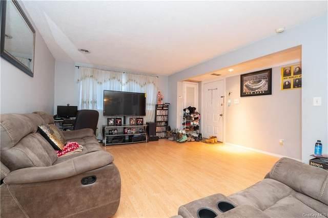 1204 Mcintosh Place, Newburgh, NY 12550 (MLS #H6097511) :: William Raveis Baer & McIntosh