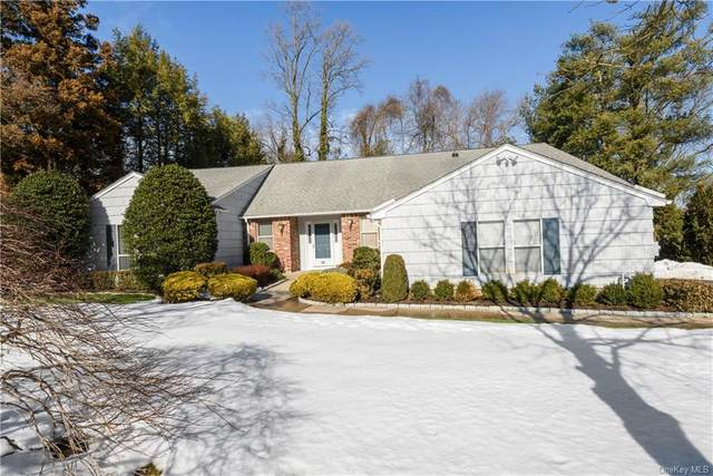 10 Devonshire Drive, White Plains, NY 10605 (MLS #H6097516) :: The McGovern Caplicki Team