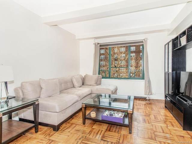 24 Metropolitan Oval 4H, Bronx, NY 10462 (MLS #H6097621) :: The McGovern Caplicki Team