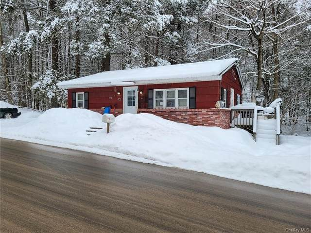 253 Pepacton Hollow Road, Grahamsville, NY 12740 (MLS #H6097626) :: William Raveis Baer & McIntosh