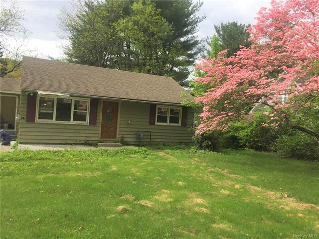 93 Route 209, Port Jervis, NY 12771 (MLS #H6097856) :: McAteer & Will Estates | Keller Williams Real Estate