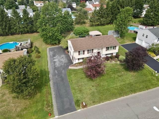 22 Hampshire Drive, Washingtonville, NY 10992 (MLS #H6097959) :: William Raveis Baer & McIntosh