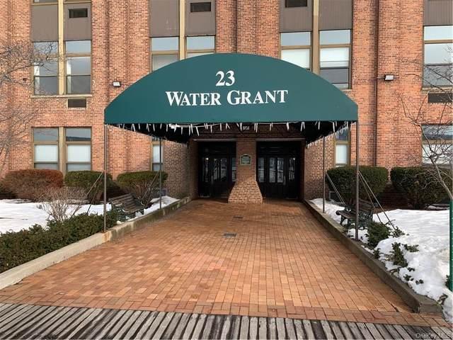 23 Water Grant Street 6L, Yonkers, NY 10701 (MLS #H6098100) :: Barbara Carter Team
