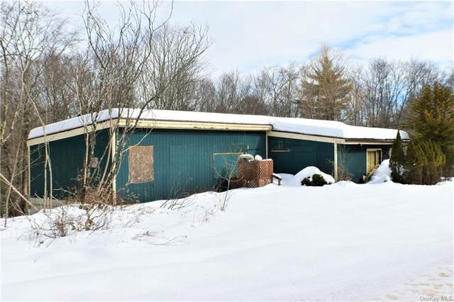 140 Hilldale Road, Hurleyville, NY 12747 (MLS #H6098332) :: RE/MAX RoNIN