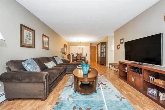 1 Fountain Lane 1L, Scarsdale, NY 10583 (MLS #H6098364) :: Howard Hanna | Rand Realty