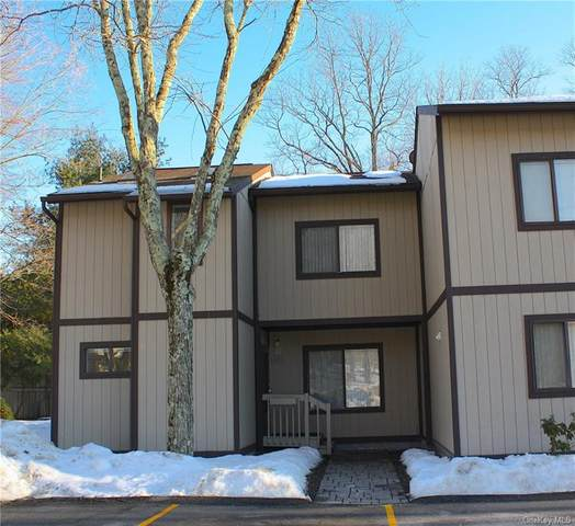 1401 Chelsea Cove S, Hopewell Junction, NY 12533 (MLS #H6098417) :: The McGovern Caplicki Team