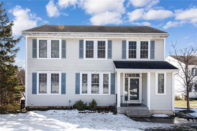 1 Fellowship Lane, Rye Brook, NY 10573 (MLS #H6098523) :: William Raveis Baer & McIntosh