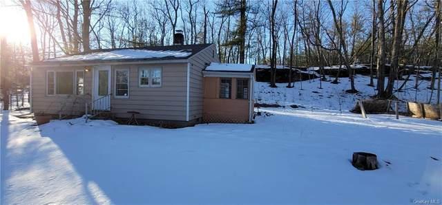 9 Laurel Lane, West Hurley, NY 12491 (MLS #H6098548) :: Signature Premier Properties