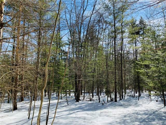 Jessop Road, Woodstock, NY 12498 (MLS #H6098637) :: Barbara Carter Team