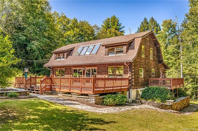124 Beaver Dam Road, Ellenville, NY 12428 (MLS #H6098705) :: William Raveis Baer & McIntosh