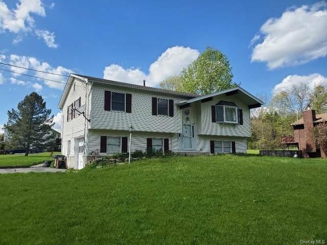 31 Ebert Road, Middletown, NY 10941 (MLS #H6098727) :: The Home Team
