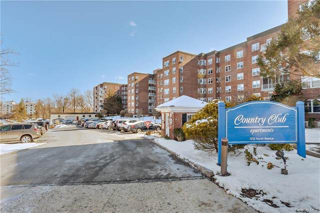 1255 North Avenue A-1E, New Rochelle, NY 10804 (MLS #H6098792) :: Frank Schiavone with William Raveis Real Estate