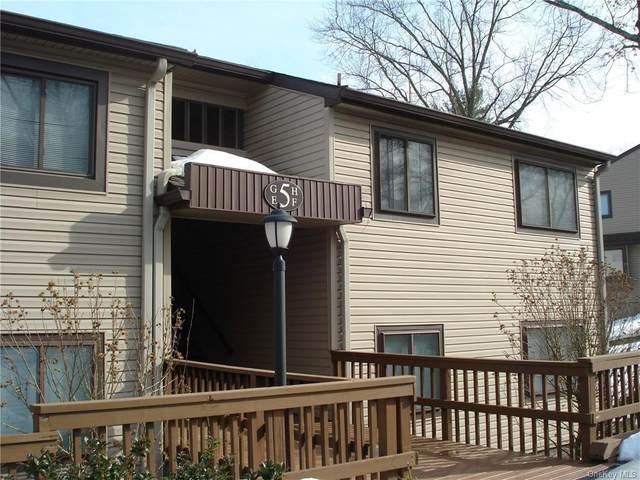 5 Downing Place H, Poughkeepsie, NY 12603 (MLS #H6098935) :: William Raveis Baer & McIntosh