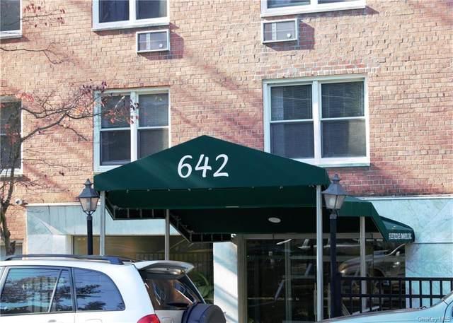 642 Locust Street 2C, Mount Vernon, NY 10552 (MLS #H6099046) :: Carollo Real Estate