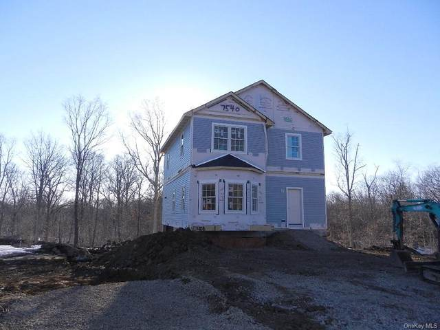 3 Isabella Court, Brewster, NY 10509 (MLS #H6099346) :: Signature Premier Properties