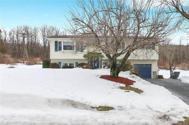 16 Lexington Avenue, Highland Mills, NY 10930 (MLS #H6099408) :: William Raveis Baer & McIntosh