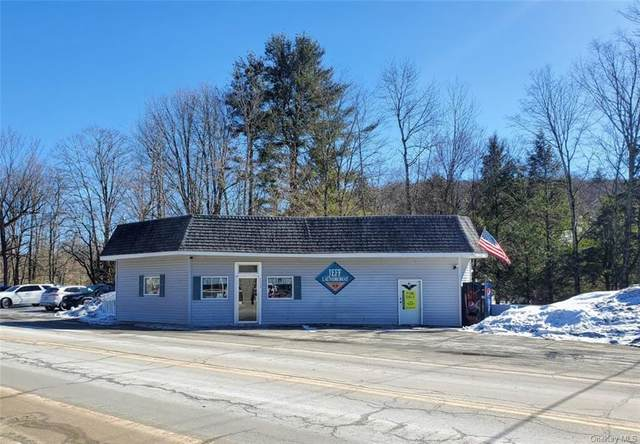 4869 State Route 52, Jeffersonville, NY 12748 (MLS #H6099537) :: McAteer & Will Estates | Keller Williams Real Estate