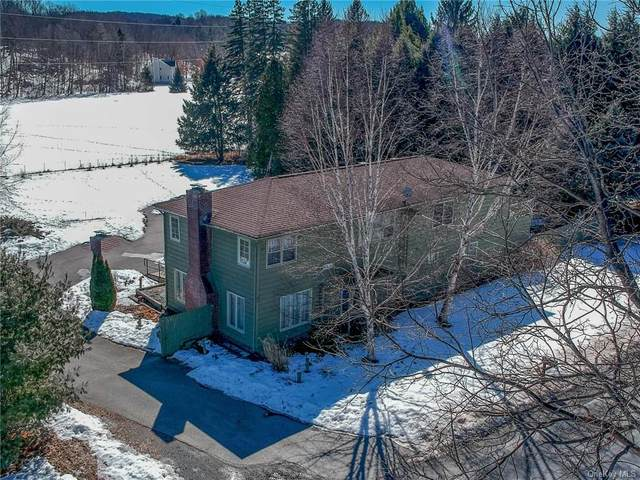 360 Hibernia Road, Salt Point, NY 12578 (MLS #H6099753) :: McAteer & Will Estates | Keller Williams Real Estate