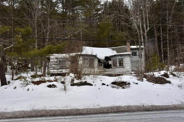 lot 2.1 Co Road 111, Narrowsburg, NY 12764 (MLS #H6099758) :: Signature Premier Properties