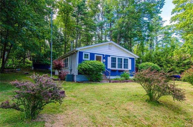 635 State Route 55, Eldred, NY 12732 (MLS #H6099759) :: Signature Premier Properties