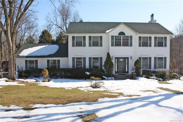 1070 Ridgebury Road, New Hampton, NY 10958 (MLS #H6099869) :: McAteer & Will Estates | Keller Williams Real Estate