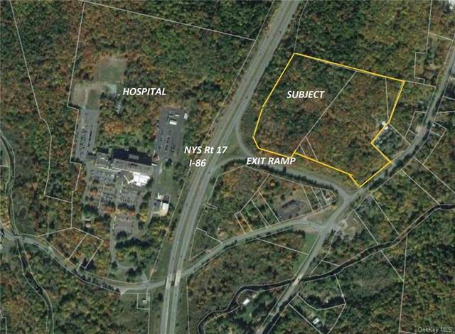 Nys Rt 17 And Old Rt 17, Harris, NY 12742 (MLS #H6099876) :: Barbara Carter Team