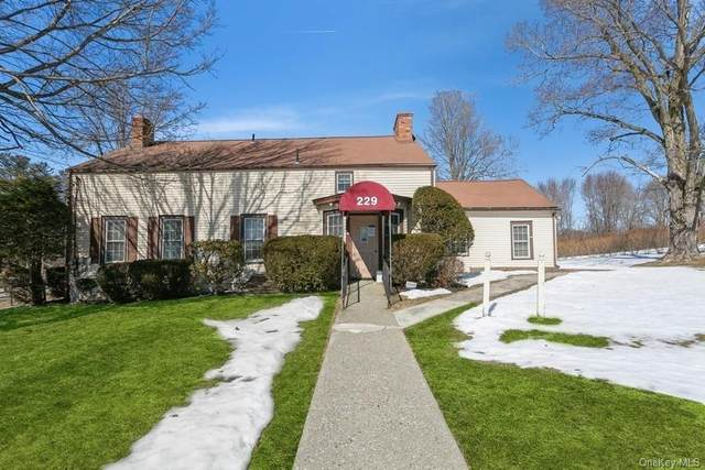 229 All Angels Hill Road, Wappingers Falls, NY 12590 (MLS #H6099936) :: McAteer & Will Estates | Keller Williams Real Estate