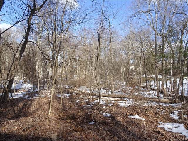 25 Briar Lane, Mohegan Lake, NY 10547 (MLS #H6099937) :: McAteer & Will Estates | Keller Williams Real Estate