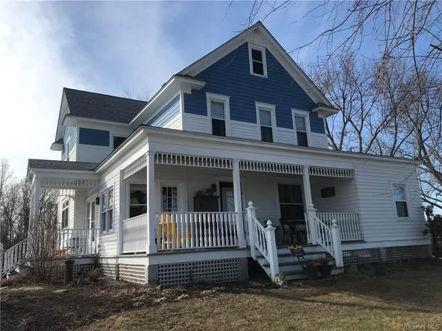 301 Nevis Road, Tivoli, NY 12583 (MLS #H6099950) :: McAteer & Will Estates | Keller Williams Real Estate