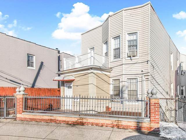 1916 White Plains Road, Bronx, NY 10462 (MLS #H6099999) :: Frank Schiavone with William Raveis Real Estate