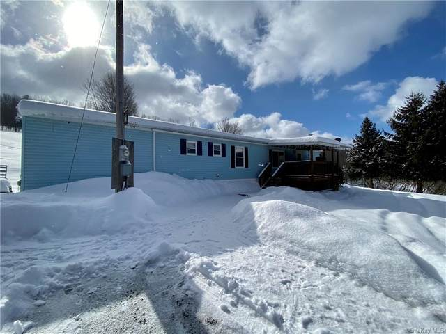 2212 Parker Hollow Road, Other, NY 13849 (MLS #H6100015) :: Frank Schiavone with William Raveis Real Estate