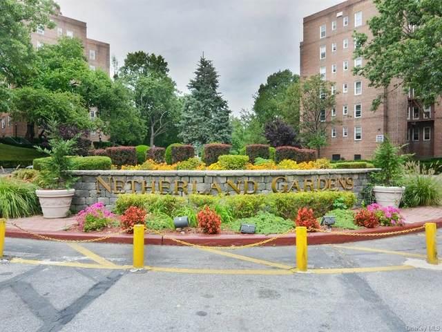 5620 Netherland Avenue 5A, Bronx, NY 10471 (MLS #H6100034) :: Carollo Real Estate