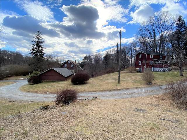 179 Hill And Dale Road, Carmel, NY 10512 (MLS #H6100206) :: Signature Premier Properties
