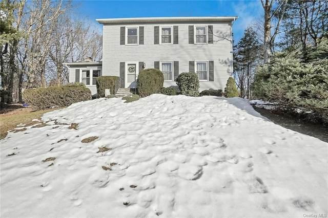 10 Mulberry Lane, Poughkeepsie, NY 12603 (MLS #H6100249) :: Signature Premier Properties