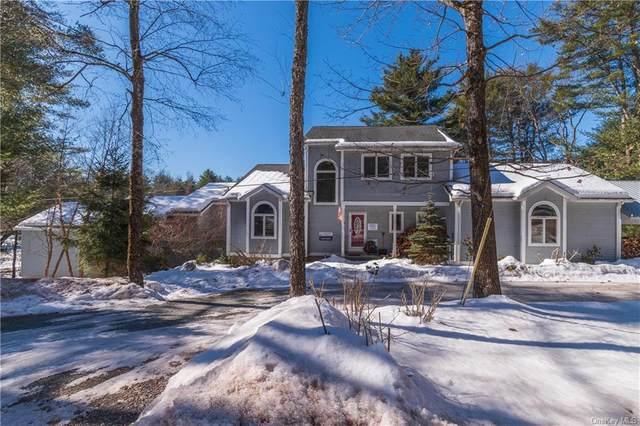 280 Pucky Huddle Road, Bethel, NY 12720 (MLS #H6100265) :: Signature Premier Properties